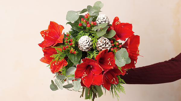 Christmas Flowers Image